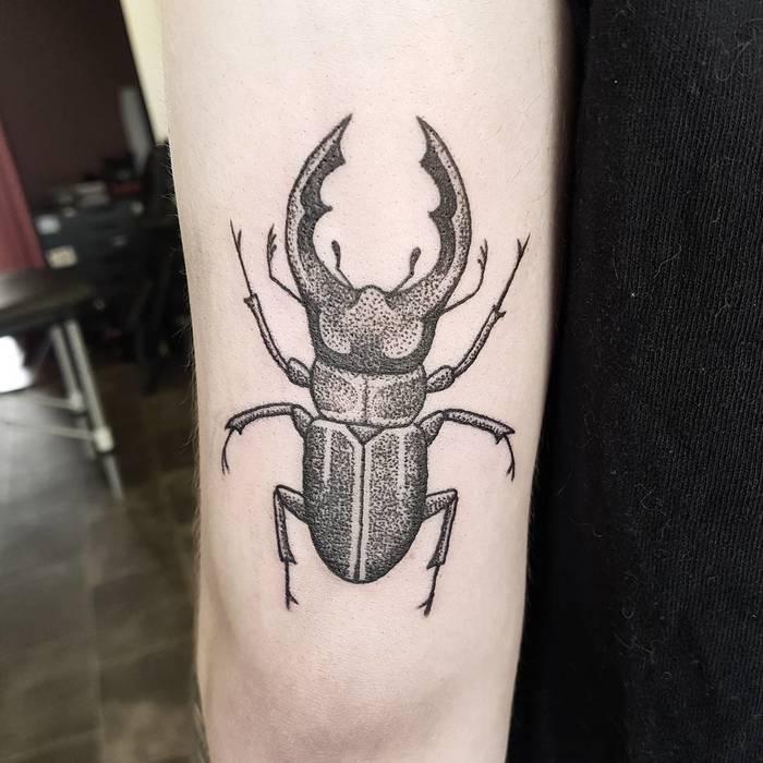 62 Ideas de Tatuajes de Escarabajos (+Significados) 25