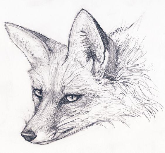 51 Tatuajes de zorros y sus significados 17